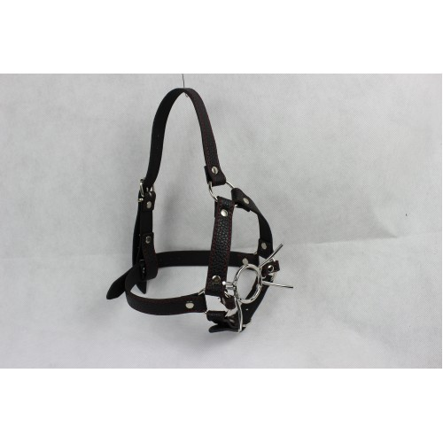 Spider Gag with Black Faux Leather Head Harness