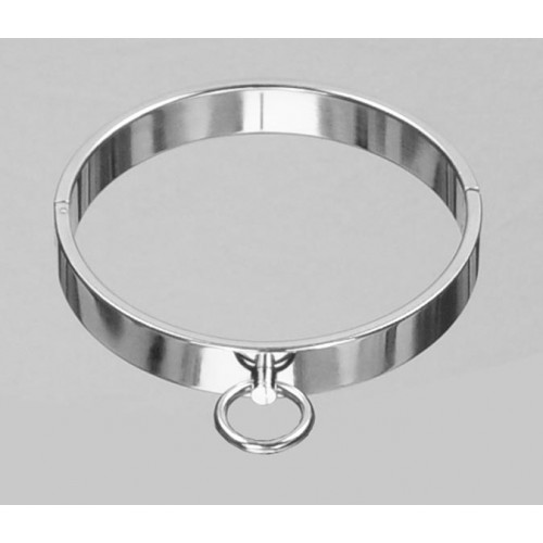 Stainless Steel Collar (Large)