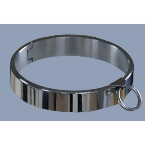 Integrated Padlock Collar (Small)