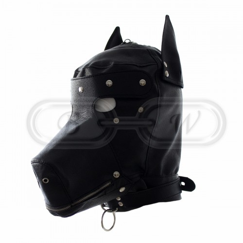 Faux Leather Dog Hood