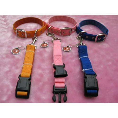 Dog Style Bondage Collar & Leash